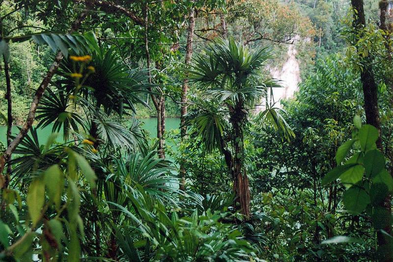 Biodiversidad México