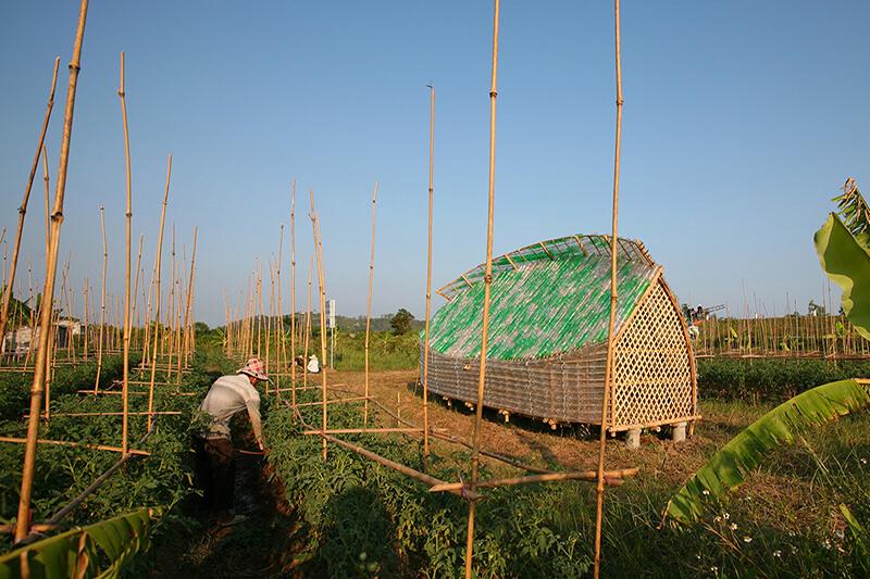 Vietman Bambú Plástico