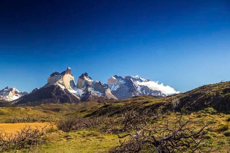 Chile Reforestación