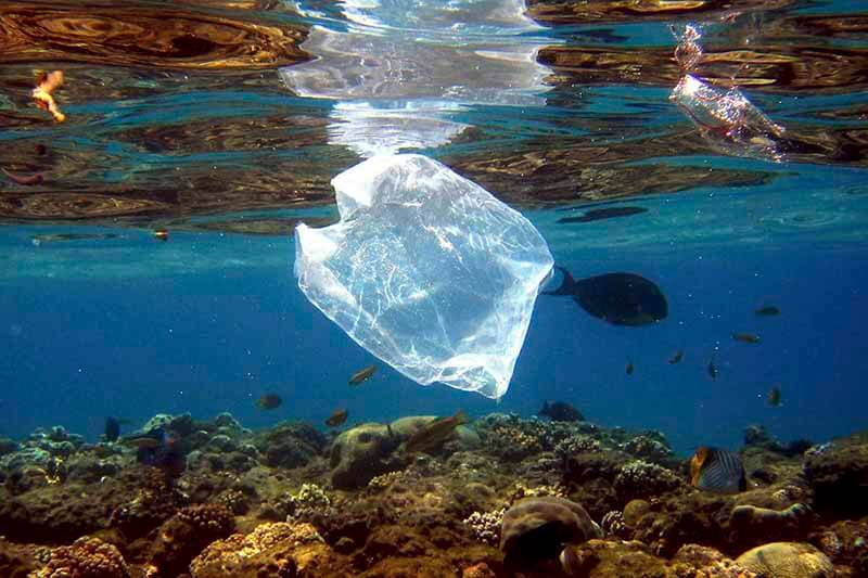 Océanos plástico