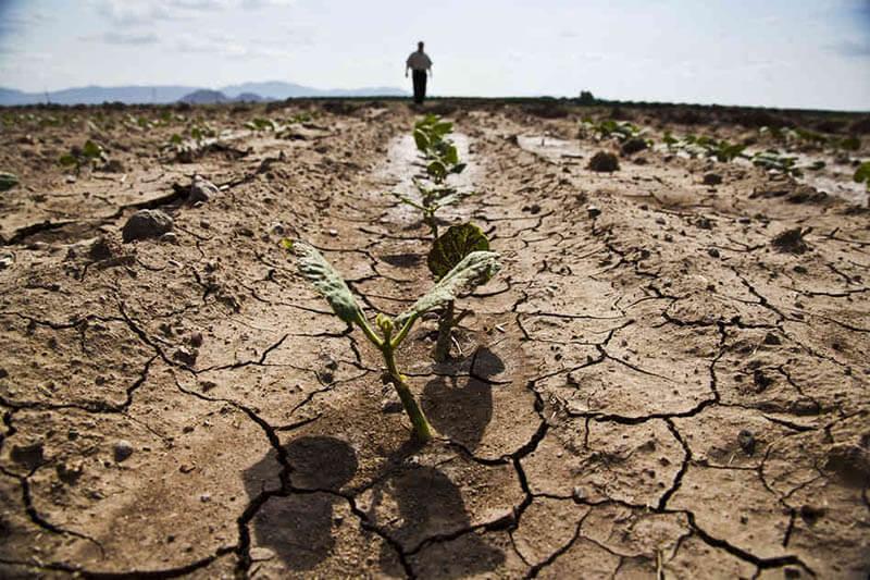 Sequía Sudán