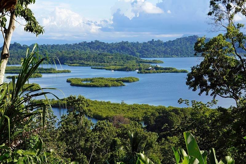 Bosques Panamá