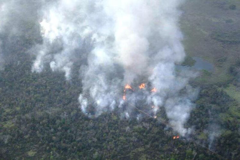 Incendio Forestal Peten