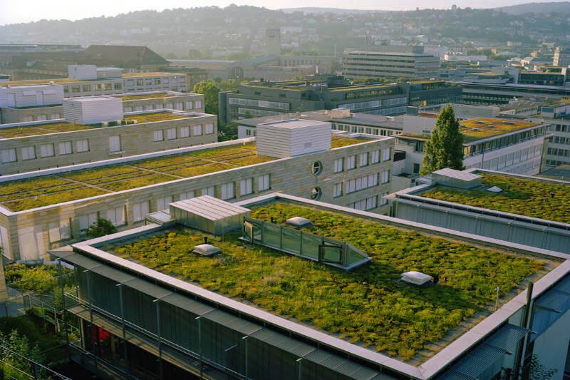 Francia techos verdes
