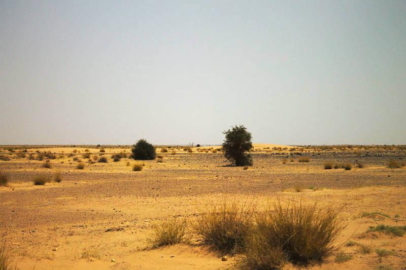 Reducir la emisión de gases de centrales de carbón en EUA prolongarían la temporada de lluvias en Sahel, África.