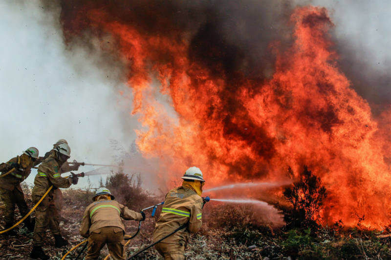 Desde el sábado, autoridades y aviones de España, Francia e Italia luchan por apagar los incendios forestales en Portugal.