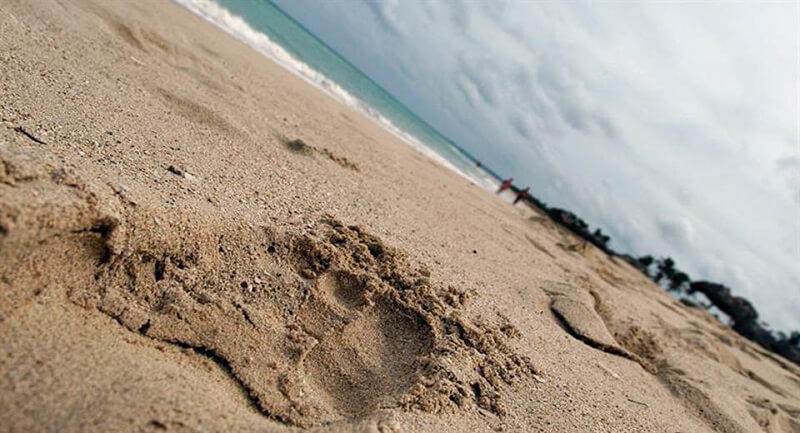 Playa Cuba, más del 80% de las playas de Cuba se han erosionado por el cambio climático.