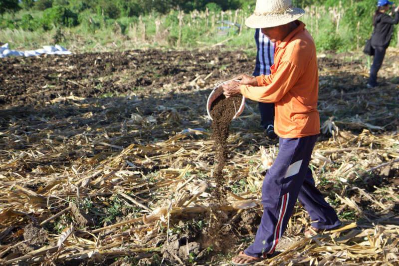 Con la agricultura de conservación se logra un 70% más de cosecha que la convencional.