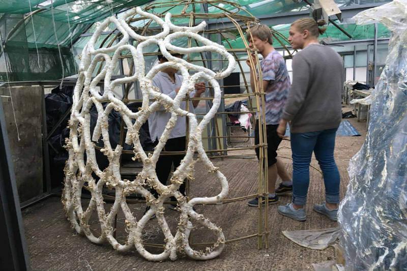 El micelio, parte vegetativa del hongo, es mezclado con cartón, luego se cultiva en un invernadero y el resultado son estructuras arquitectónicas impresionantes.