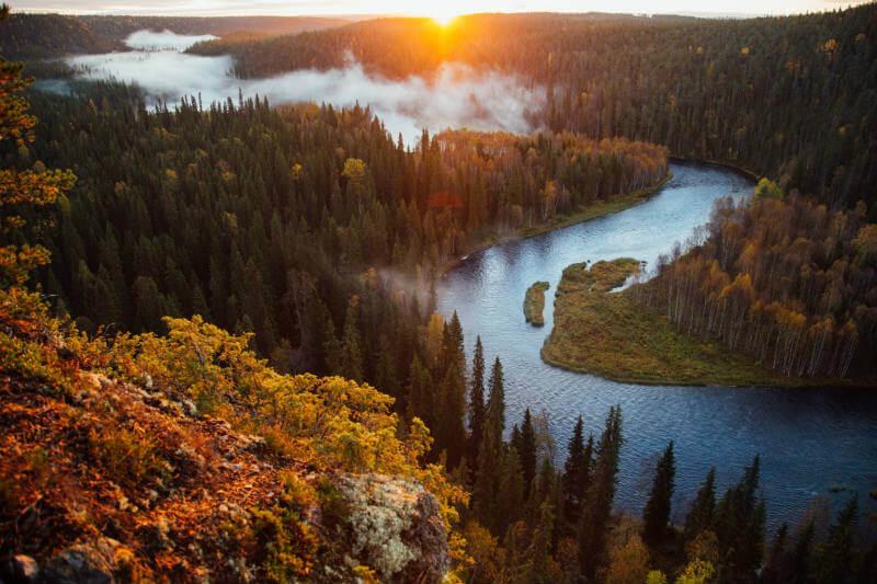 El país cuenta con 23 millones de hectáreas de bosque del cual se deriva el 21.6% de todas sus exportaciones.