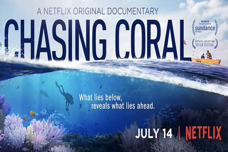 Nuevo documental de Netflix, Chasing Coral narra la crisis de los arrecifes de coral