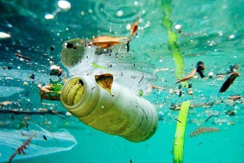 Estudio revela que la producción plástica ha aumentado desde 1950 y continuará acumulándose en el océano a un ritmo cada vez mayor.