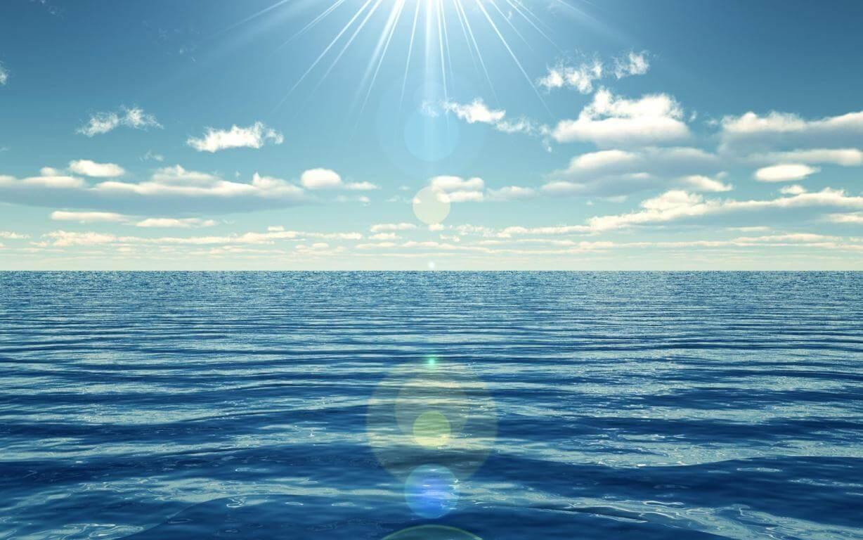 La misión de la organización Inland Ocean Coalition es hacer que la gente se una por la conservación de los océanos.