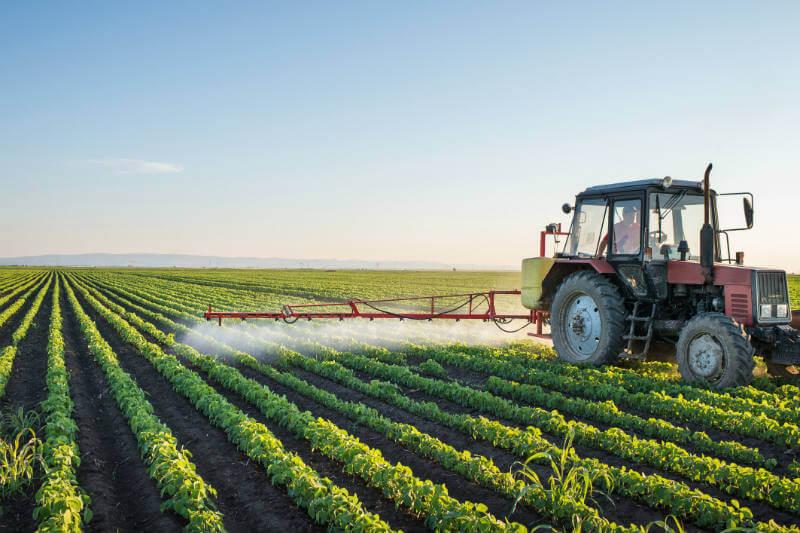 Un estudio sugiere que la agricultura ha liberado casi tanto carbono en la atmósfera como la deforestación.