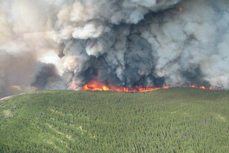 Las llamas han consumido 1.2 millones de hectáreas de bosques y pastizales, convirtiéndose en el segundo peor año registrado.