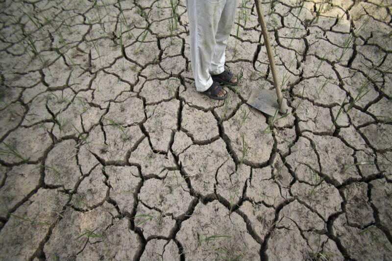 Desde 1995, más de 300,000 agricultores y trabajadores agrícolas se han suicidado en la India.