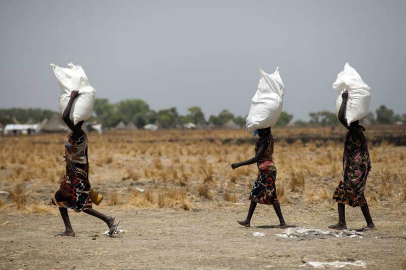 Más de 815 millones de personas sufren de hambre por causa de conflictos armados y por los impactos climáticos cada vez más fuertes.
