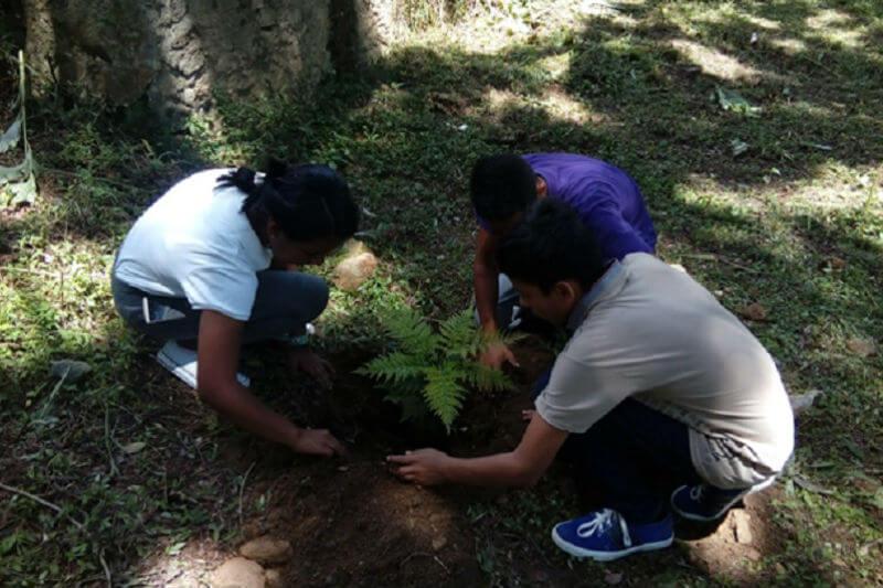 Por medio de su programa de radio, Tierra Viva, el grupo brinda un espacio abierto para aprender y dialogar sobre el medio ambiente.