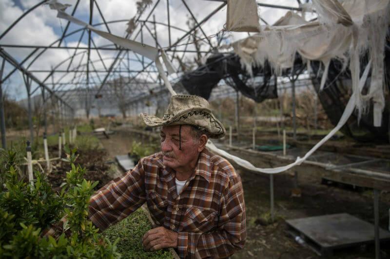 Carlos Flores comenta que el huracán aniquiló el 80% del valor de las cosechas en la isla, convirtiéndose en una de las tormentas más costosas.
