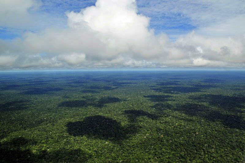 Datos satelitales indican que los cambios en los procesos de la superficie terrestre, debido a fenómenos climatológicos, aumentan las emisiones de CO2.