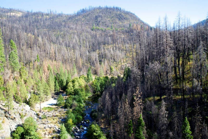 Estudio predice que un aumento en la frecuencia y la magnitud de los incendios forestales duplicará las tasas de sedimentación de las cuencas Occidentales.