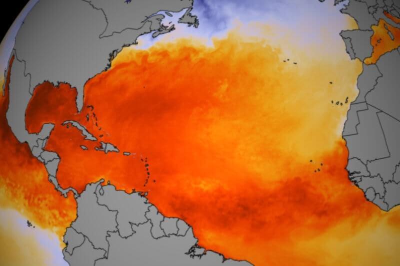Los océanos son el termómetro del calentamiento global, nos explican cómo nuestras actividades diarias los han afectado.