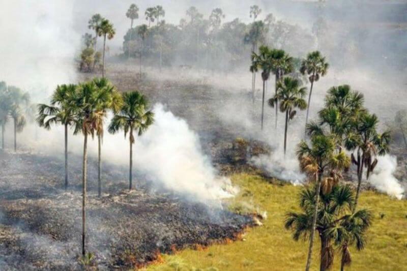 Un incendio en un parque nacional en el estado de Goias, en el centro del país, ha destruido casi un cuarto del área protegida.