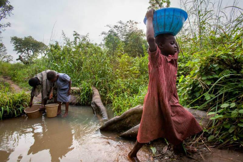 """""""Los hallazgos del estudio muestran que los bosques y otros sistemas naturales pueden complementar los sistemas tradicionales de saneamiento del agua"""", Diego Herrera."""