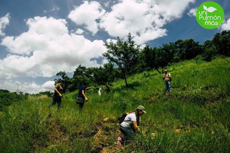 La organización sin fines de lucro realiza actividades para el desarrollo de una sociedad responsable con el medio ambiente.