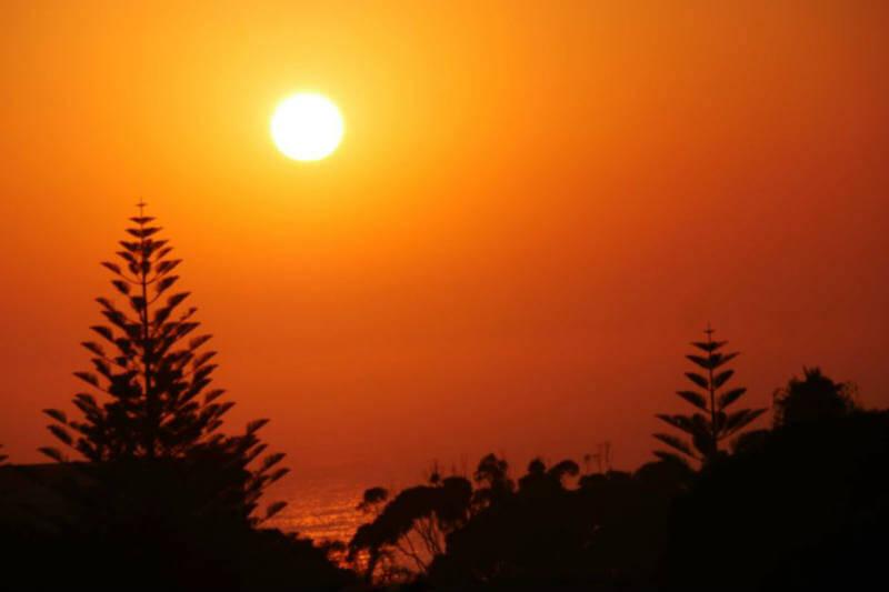 """""""Estudios científicos han demostrado que al aumentar las temperaturas, también la cantidad de enfermedades relacionadas con el calor"""", Kim Knowlton."""