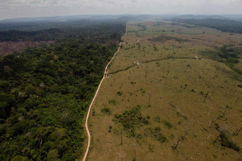 Según datos satelitales: 6,624 km2 de bosques fueron destruidos entre agosto 2016 y julio 2017, en comparación con 7,893 km2 en 2015 y 2016.