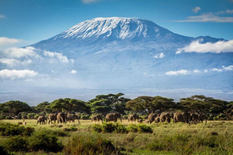 Según la IUCN, el número de sitios del patrimonio mundial natural en riesgo grave por el calentamiento global se ha duplicado en tres años.