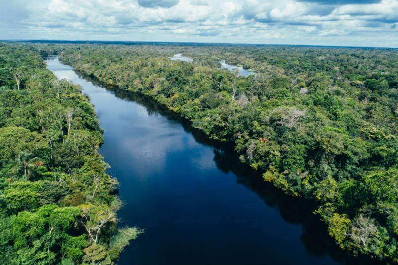 El proyecto de Conservation International tiene como objetivo restaurar 70,000 acres de bosque tropical en varios estados brasileños.