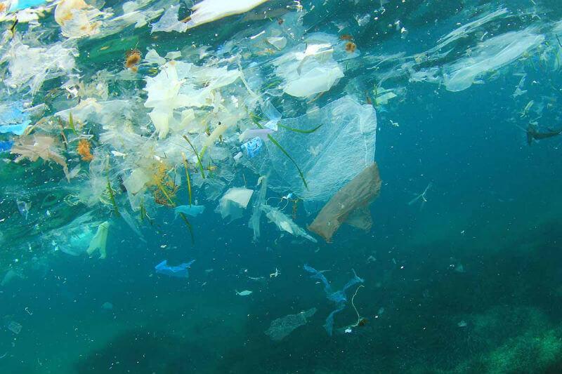 El Senado de EE. UU. aprobó la ley Save Our Seas para reautorizar un programa de desechos marinos y así reducir la contaminación oceánica.