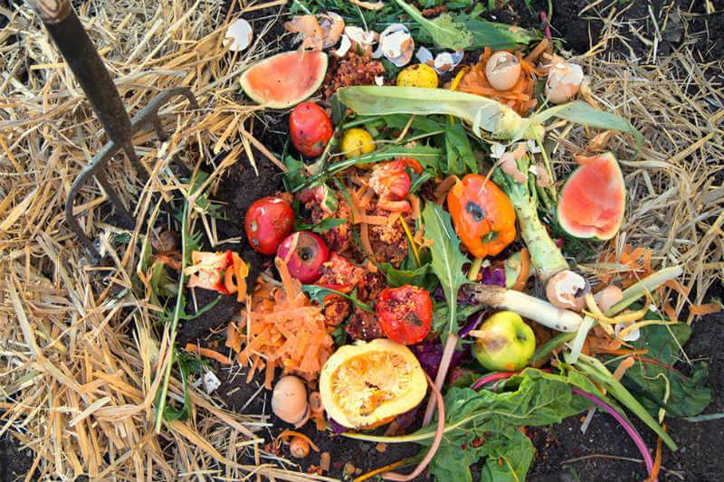 El desperdicio y pérdida de alimentos equivale alrededor de 3.3 mil millones de toneladas de CO2 equivalente.