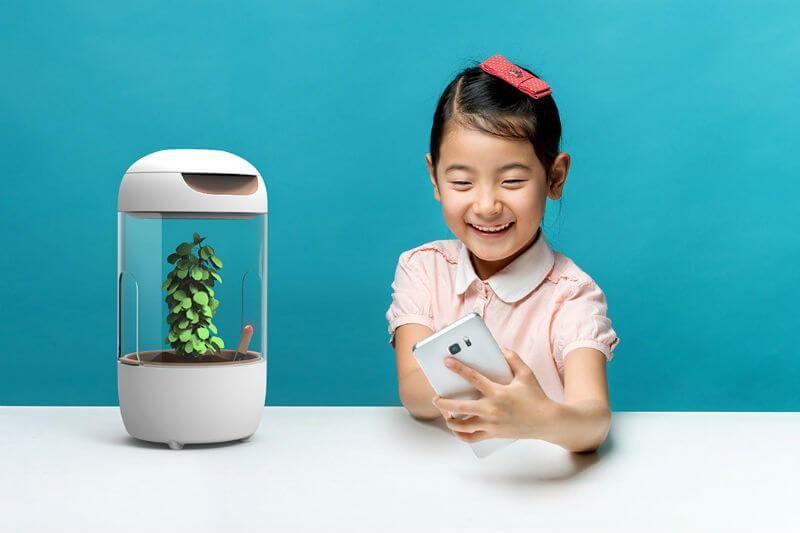 Este concepto da a los pequeños la oportunidad de conocer el ciclo de crecimiento de las plantas y al mismo tiempo aprenden sobre el valor de los alimentos.