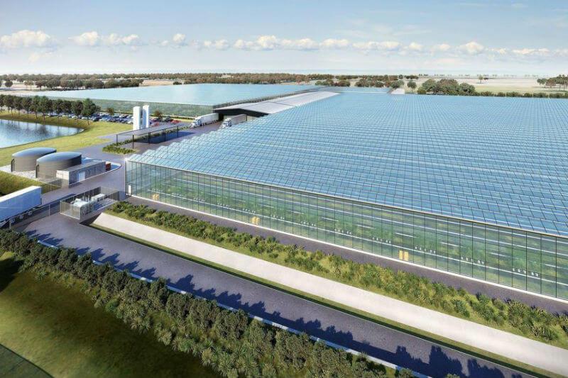 El viento y las baterías de Tesla proporcionarán a la nueva granja hidropónica de Nectar Farms toda la energía que necesita.