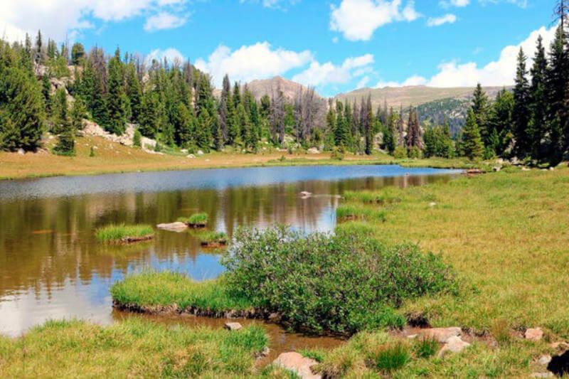 El científico Andy Wood comenta que la herramienta ofrece pronósticos de temperatura y precipitación a nivel de cuencas en los Estados Unidos.