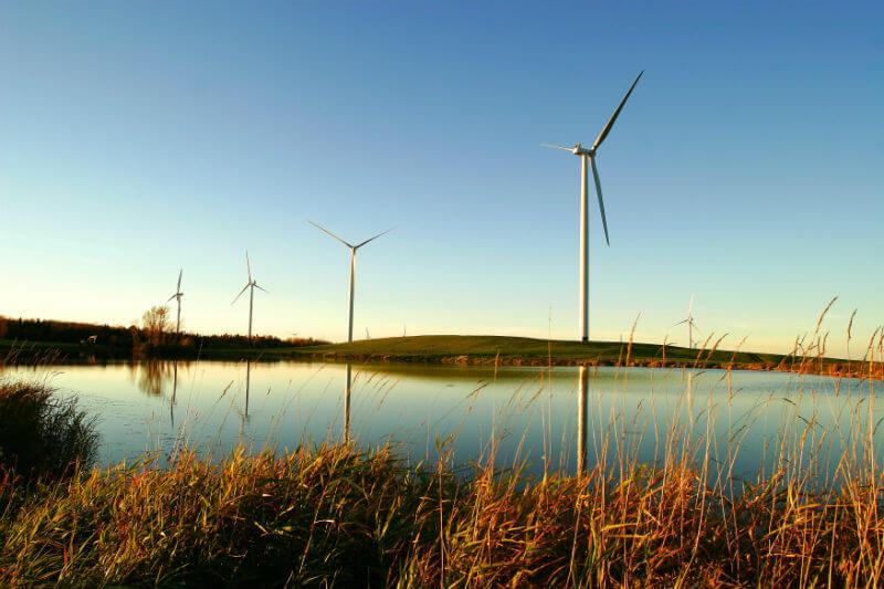 Informe de consultora resalta que la descarbonización permitirá un ahorro de 380,000 millones de euros a largo plazo en importaciones de combustibles fósiles.