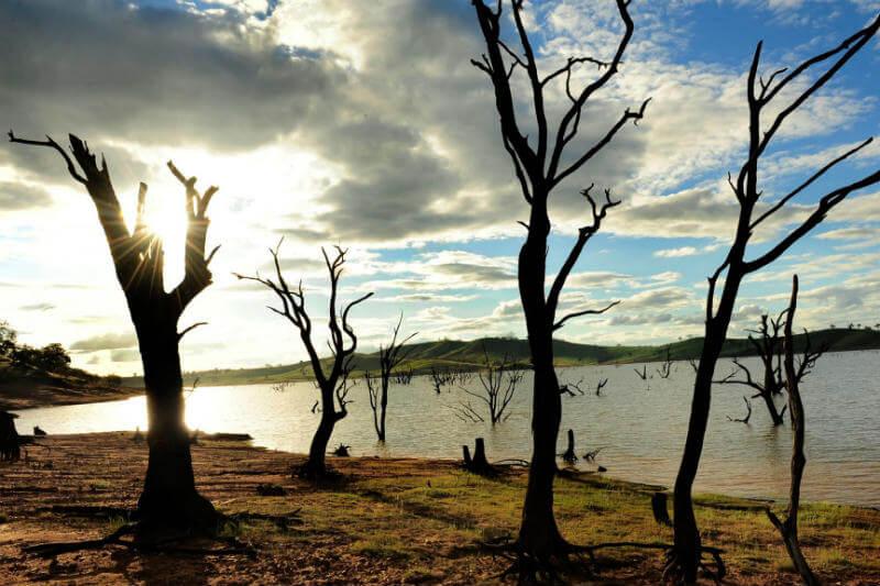 En los próximos cinco años, los gases de efecto invernadero pueden impulsar el calentamiento global más allá del umbral establecido por el Acuerdo de París.