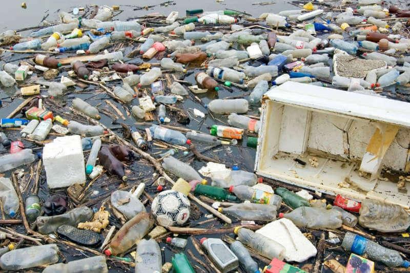 Científicos identificaron el sistema que permite a la bacteria Azotobacter vinelandiiproducir dos tipos de plásticos biodegradables.