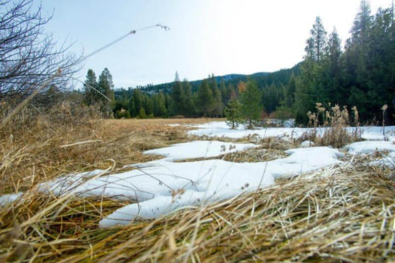 California y otros estados del sudoeste enfrentan un clima cálido, precipitaciones por debajo de la media y poca nieve.