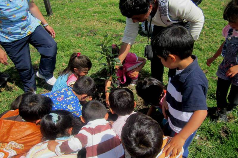 Gracias a su persistencia, disciplina y dedicación, Beatriz ha transformado su comunidad por medio de una gestión ambiental íntegra.