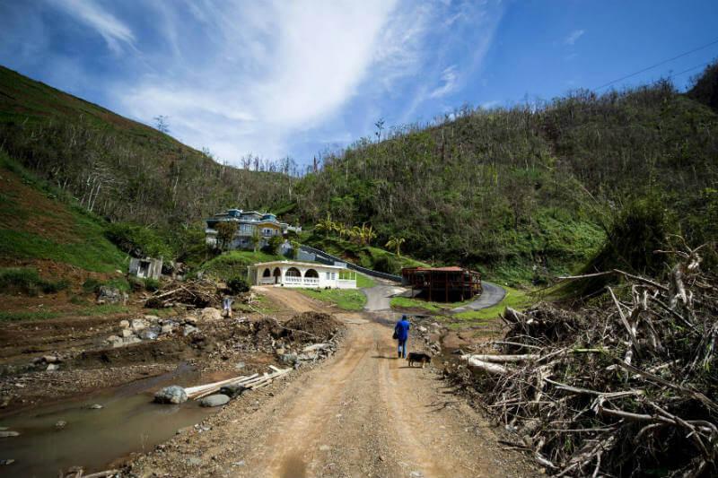 Estados del Caribe solicitan fondos para proteger su escasa producción de alimentos que son amenazados cada vez más por desastres climáticos.