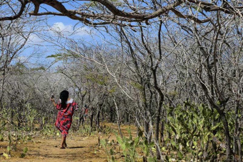"""Se han adoptado decisiones para """"promover más participación de las mujeres en las negociaciones internacionales de cambio climático"""", Patricia Espinosa."""