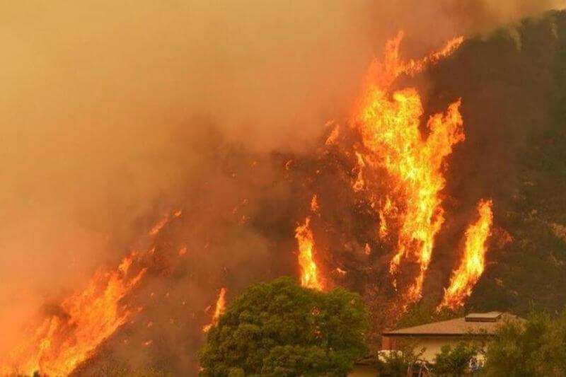 Desde enero pasado, los incendios han consumido un total de 16,623 hectáreas de bosques.