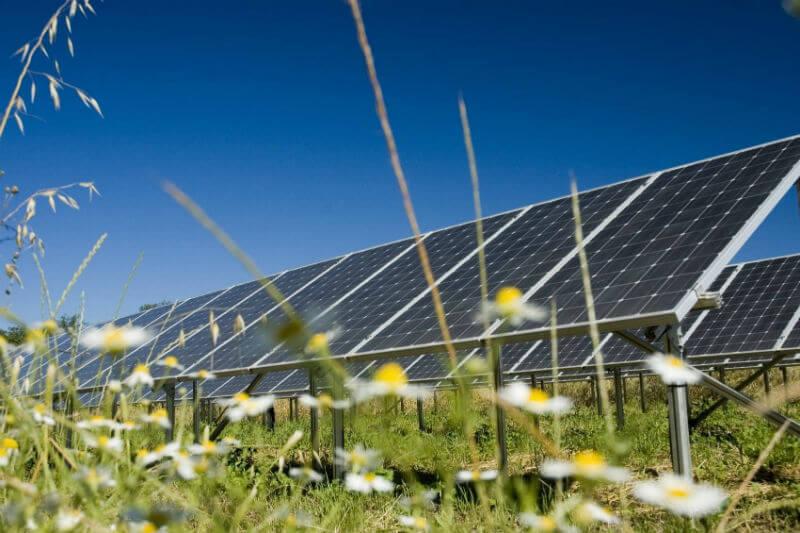 Siete de cada 10 pesos que se inviertan en el sector eléctrico en los próximos 12 años serán la generación de energía limpia, según Joaquín Coldwell.