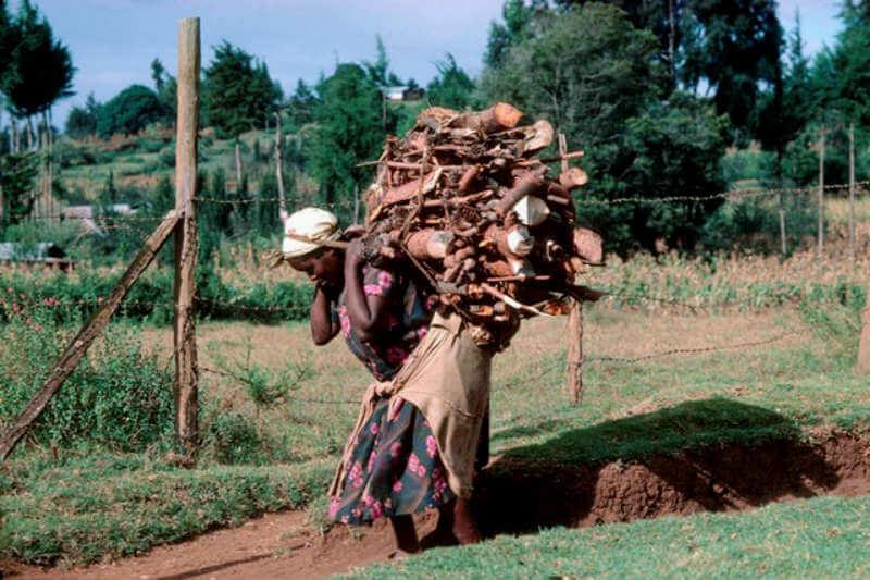 A muchas mujeres les cuesta recaudar fondos de los bancos. Para superarlo, recurren al financiamiento colectivo y así pueden crear fuentes de energía limpia.
