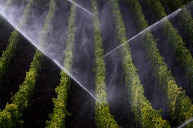 La CE presentó normas para facilitar el uso de aguas residuales tratadas para el riego de plantaciones y así aliviar la escasez del recurso de forma segura.