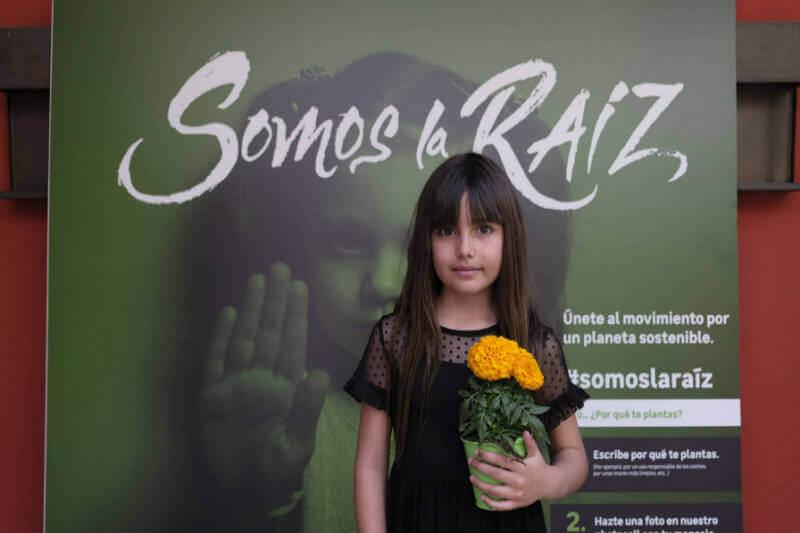 Bicis en todos lados, apagones de un día o un árbol por cada recién nacido: escolares de toda España llevarán un manifiesto verde al Gobierno.